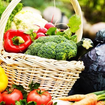 Certificazione di agricoltura biologica
