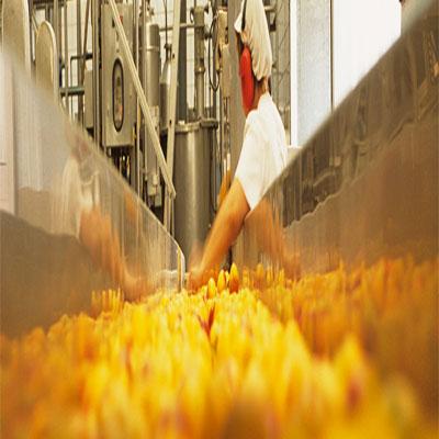PROCESO DE CERTIFICACION HACCP